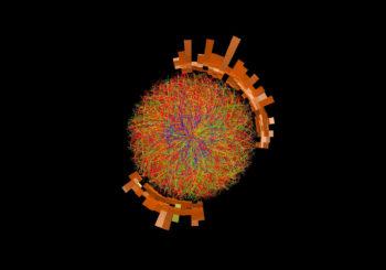 CERN: Post Career Break Fellowship